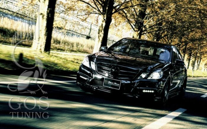 Обвес «Wald Black Bison Sports Line» на Mercedes E-class